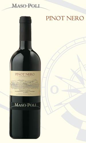 L´elegante Pinot Nero di Maso Poli