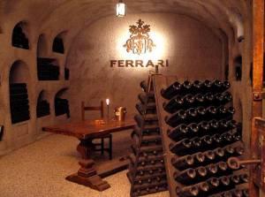 vini e spumanti di eccellenza